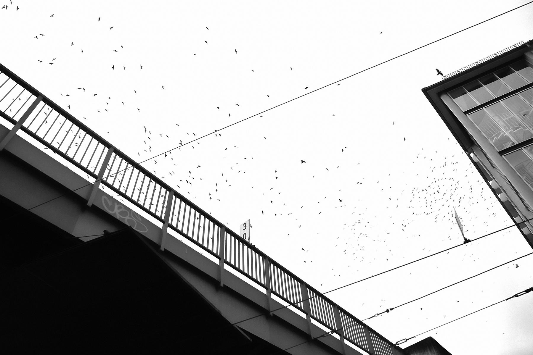 Street, Berlin, 11.11.2017_ 073_72dpi